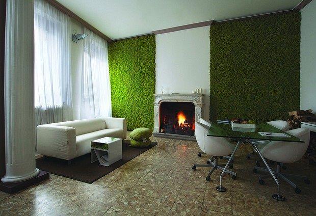 mech chrobotek żywa dekoracja salonu