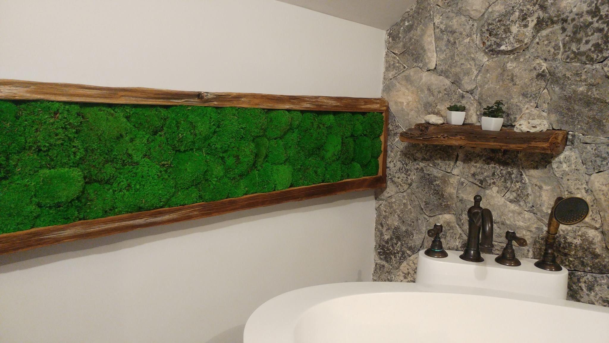 mech chrobotek żywa dekoracja łazienki