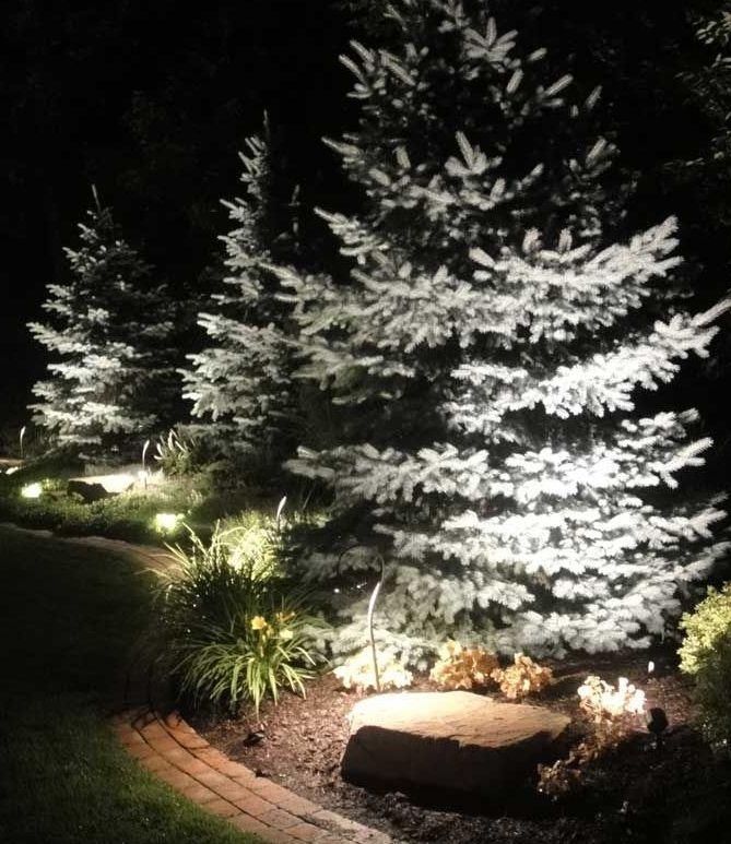 lampy do oświetlenia świerka w ogrodzie
