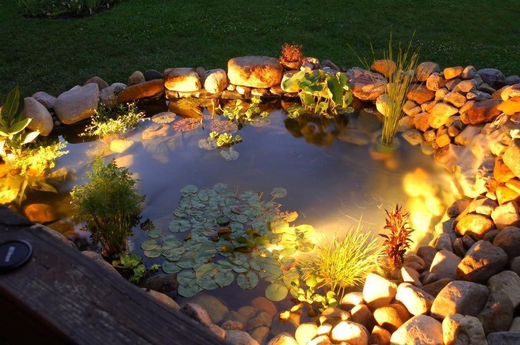 reflektorek do oświetlenia oczka wodnego i basenu