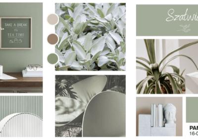 Aranżacje salonu, kuchni i sypialni w kolorze szałwii - nasze TOP 5 w odcieniu szałwiowej zieleni