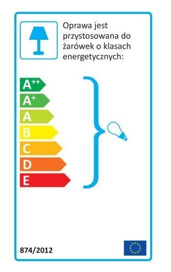 Etykieta energetyczna lampy do wszystkich żarówek