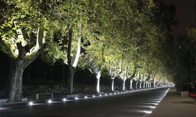Oświetlenie wjazdu w kostce brukowej – jakie lampy zewnętrzne?