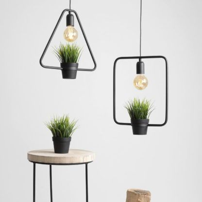 lampa wisząca z roślinką