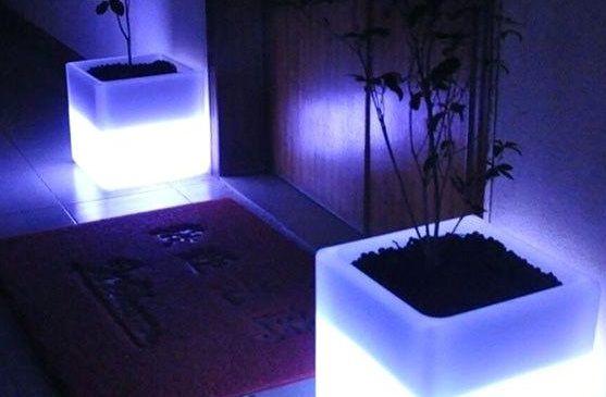 podświetlane donice do drzwi wejściowych