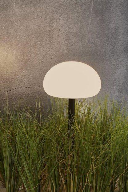 lampa ogrodowa do podświetlenia trawy