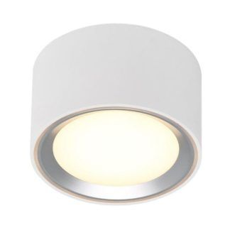 Lampa sufitowa Fallon - biel, srebro, LED